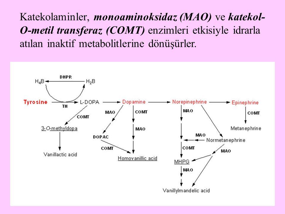 Katekolaminler, monoaminoksidaz (MAO) ve katekol-O-metil transferaz (COMT) enzimleri etkisiyle idrarla atılan inaktif metabolitlerine dönüşürler.