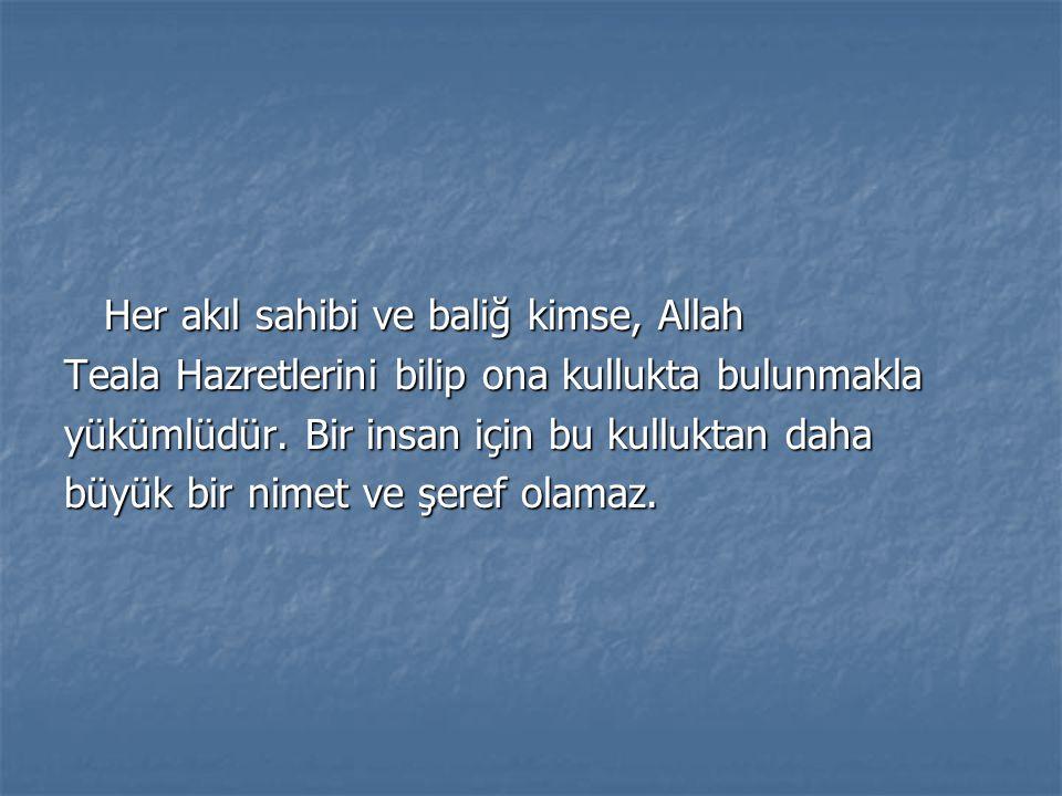 Her akıl sahibi ve baliğ kimse, Allah