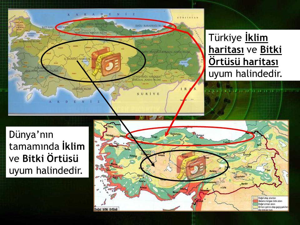 Türkiye İklim haritası ve Bitki Örtüsü haritası uyum halindedir.