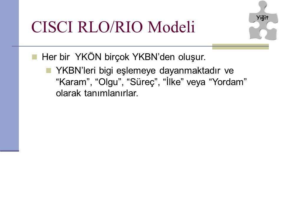 CISCI RLO/RIO Modeli Her bir YKÖN birçok YKBN'den oluşur.