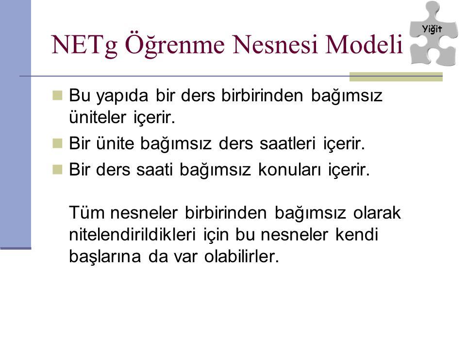 NETg Öğrenme Nesnesi Modeli