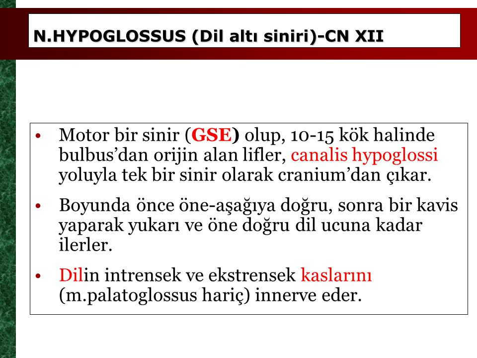 N. N.HYPOGLOSSUS (Dil altı siniri)-CN XII