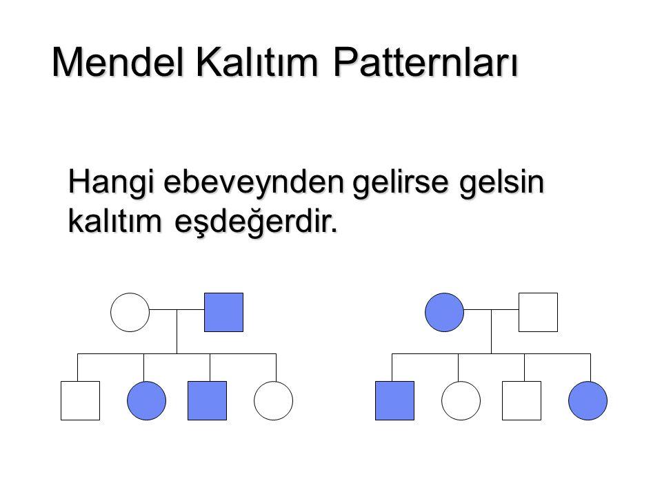 Mendel Kalıtım Patternları