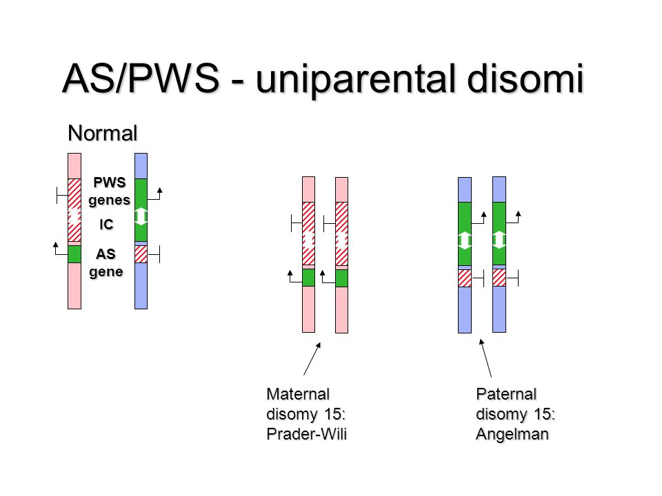 AS/PWS - uniparental disomi