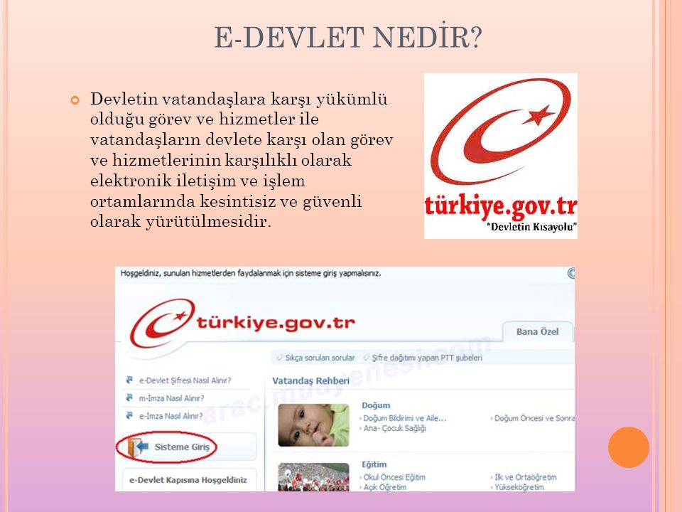 E-DEVLET NEDİR