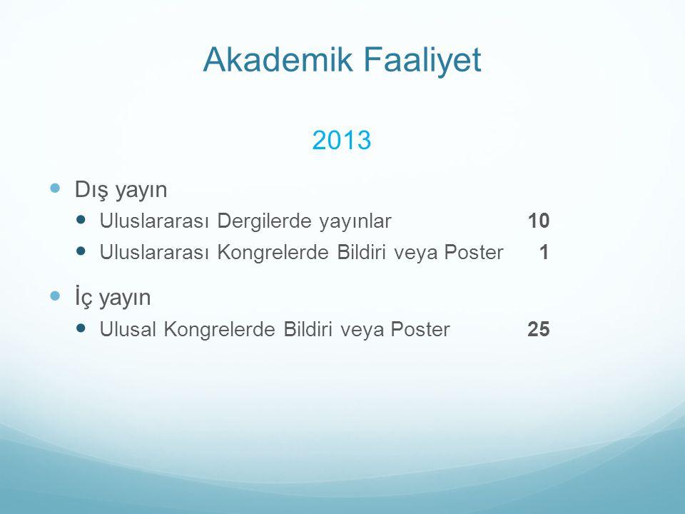 Akademik Faaliyet 2013 Dış yayın İç yayın