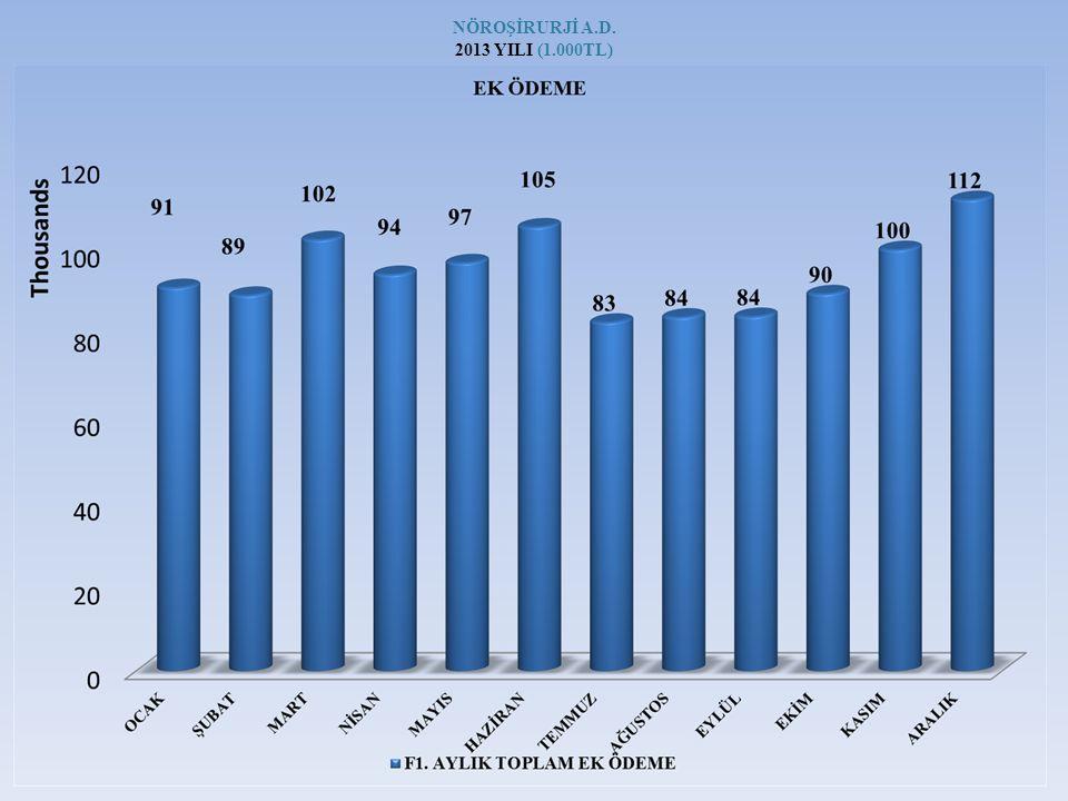 NÖROŞİRURJİ A.D. 2013 YILI (1.000TL)
