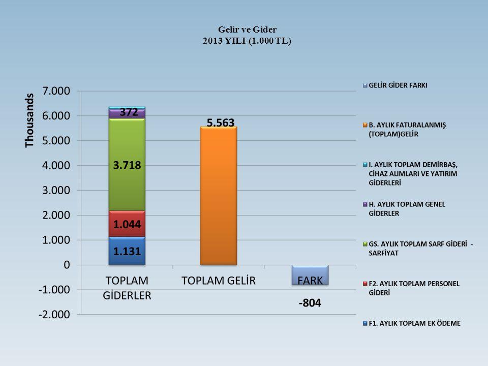 Gelir ve Gider 2013 YILI-(1.000 TL)