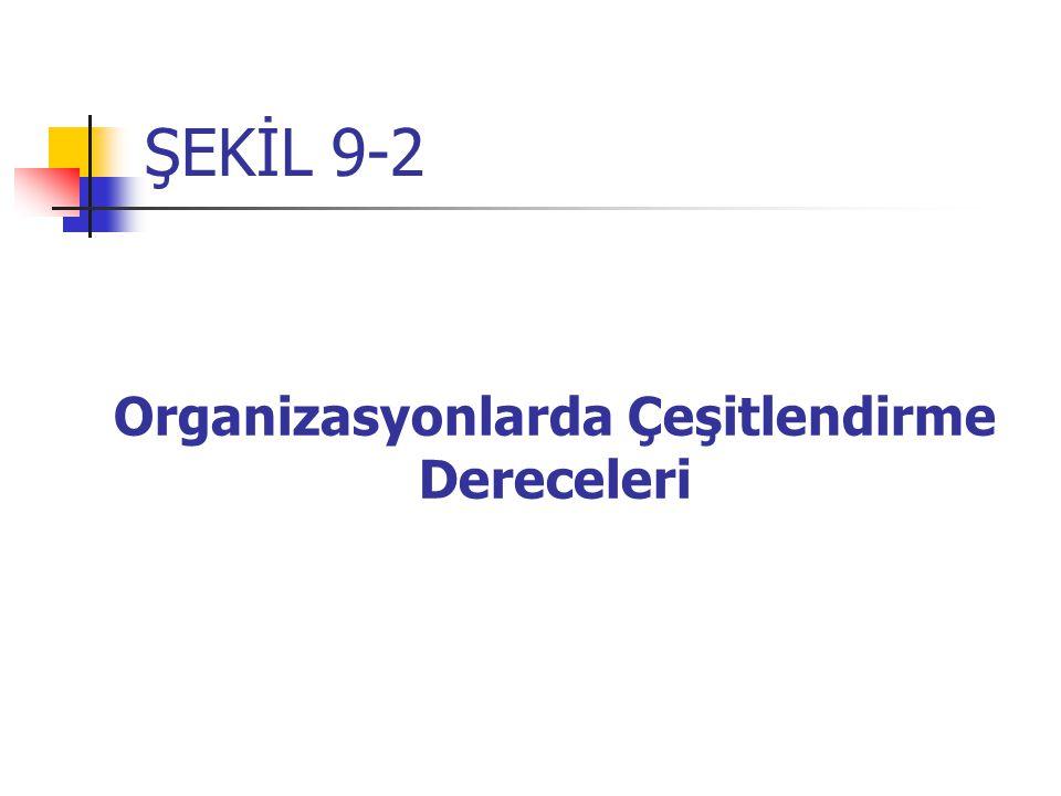 Organizasyonlarda Çeşitlendirme Dereceleri
