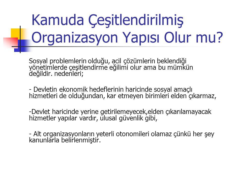 Kamuda Çeşitlendirilmiş Organizasyon Yapısı Olur mu