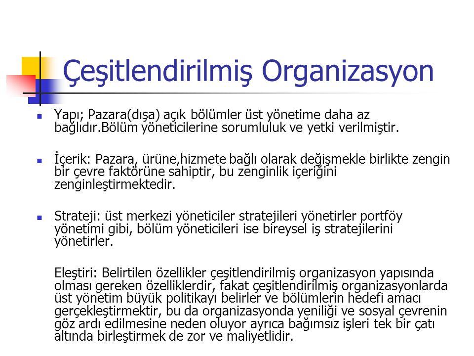 Çeşitlendirilmiş Organizasyon