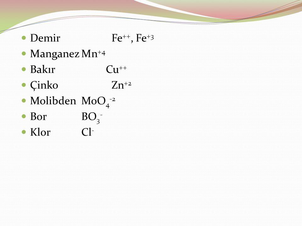 Demir Fe++, Fe+3 Manganez Mn+4. Bakır Cu++ Çinko Zn+2.