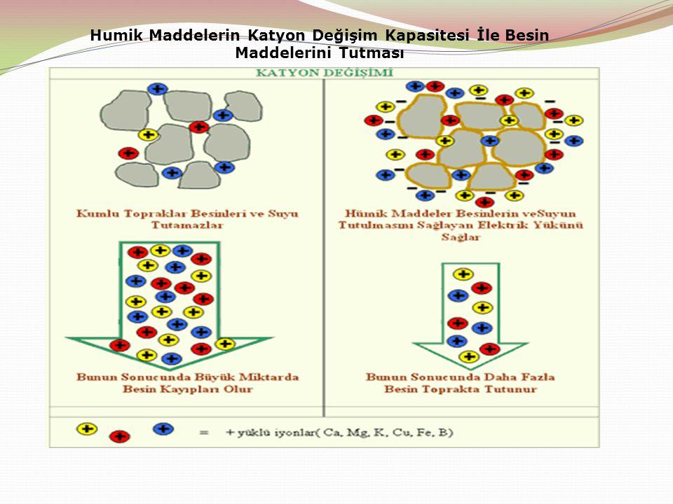 Humik Maddelerin Katyon Değişim Kapasitesi İle Besin Maddelerini Tutması