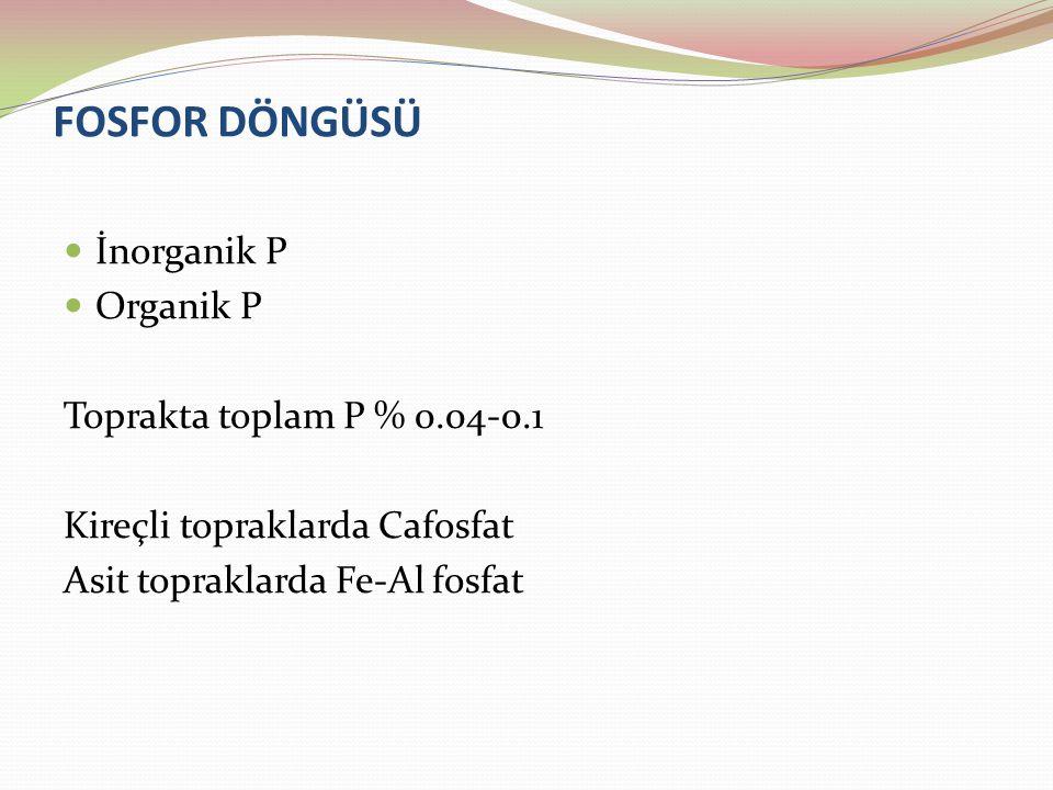 FOSFOR DÖNGÜSÜ İnorganik P Organik P Toprakta toplam P % 0.04-0.1