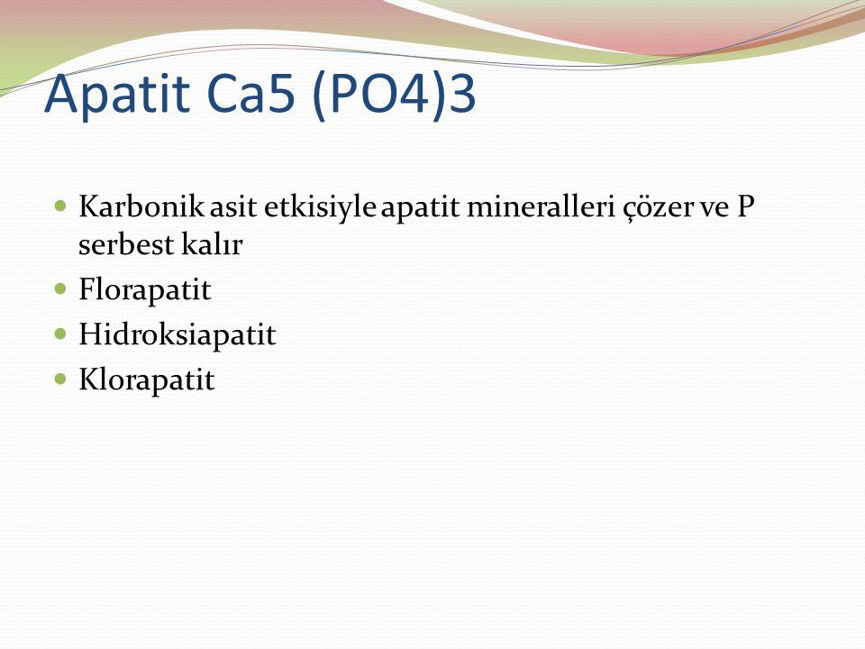 Apatit Ca5 (PO4)3 Karbonik asit etkisiyle apatit mineralleri çözer ve P serbest kalır. Florapatit.