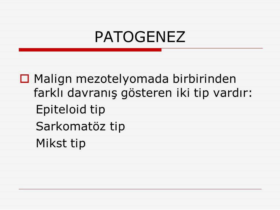 PATOGENEZ Malign mezotelyomada birbirinden farklı davranış gösteren iki tip vardır: Epiteloid tip.