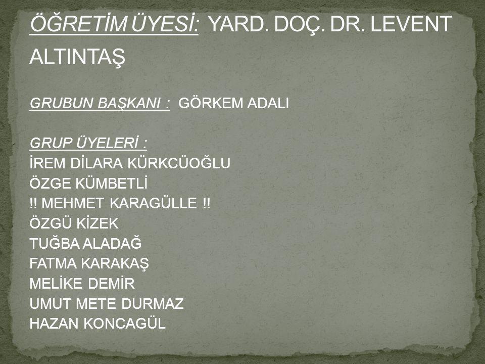 ÖĞRETİM ÜYESİ: YARD. DOÇ. DR. LEVENT ALTINTAŞ