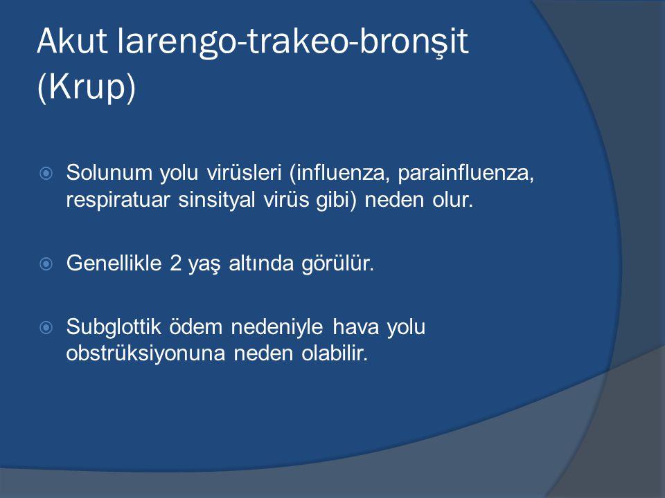 Akut larengo-trakeo-bronşit (Krup)