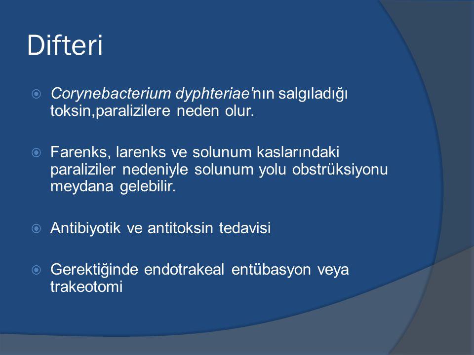 Difteri Corynebacterium dyphteriae nın salgıladığı toksin,paralizilere neden olur.