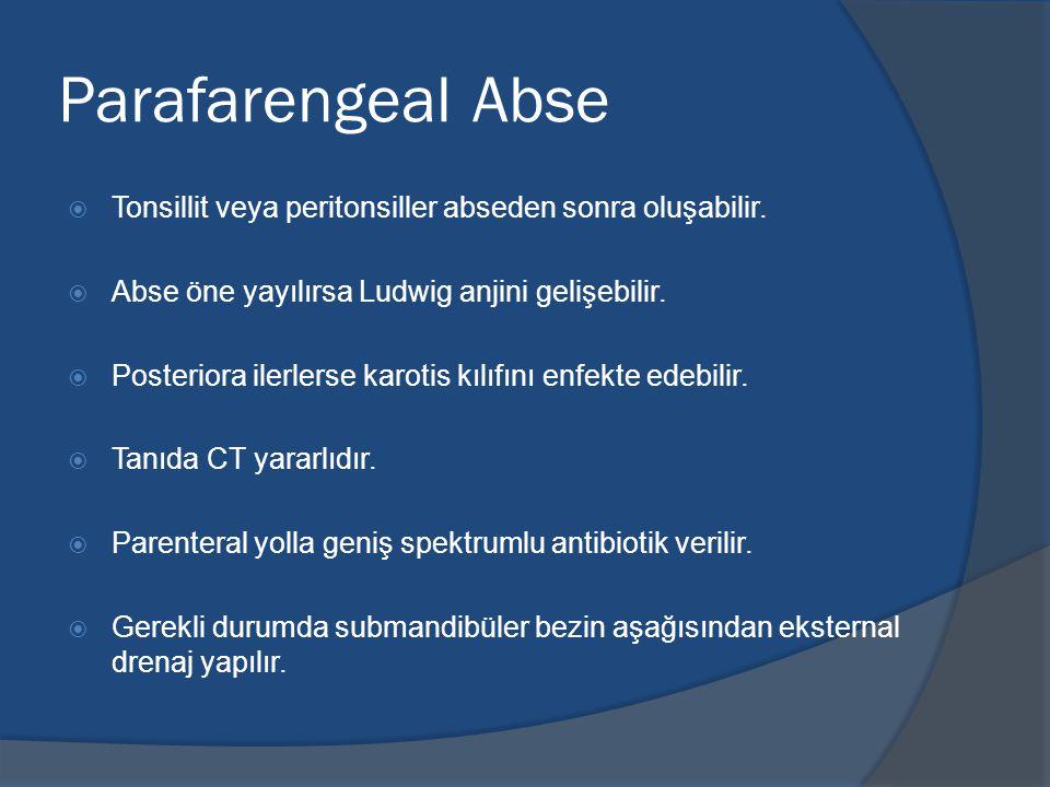 Parafarengeal Abse Tonsillit veya peritonsiller abseden sonra oluşabilir. Abse öne yayılırsa Ludwig anjini gelişebilir.