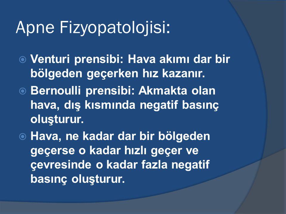 Apne Fizyopatolojisi: