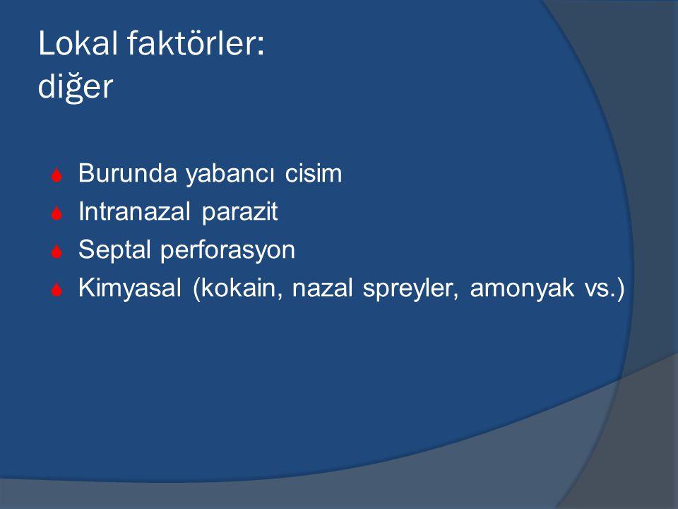 Lokal faktörler: diğer