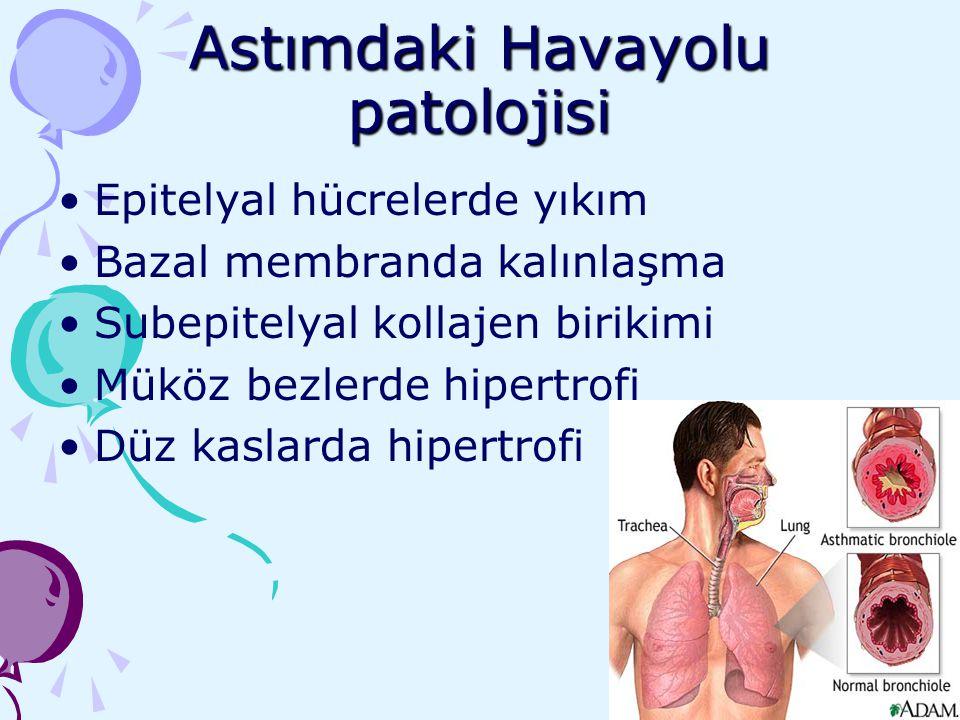 Astımdaki Havayolu patolojisi