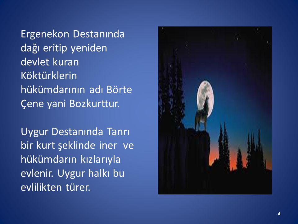 Ergenekon Destanında dağı eritip yeniden devlet kuran Köktürklerin hükümdarının adı Börte Çene yani Bozkurttur.