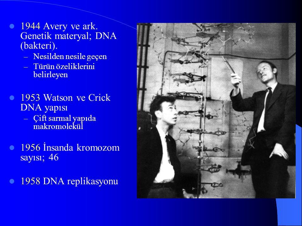 1944 Avery ve ark. Genetik materyal; DNA (bakteri).