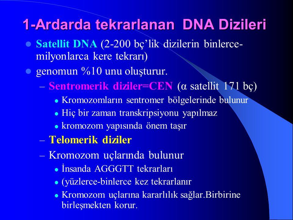 1-Ardarda tekrarlanan DNA Dizileri