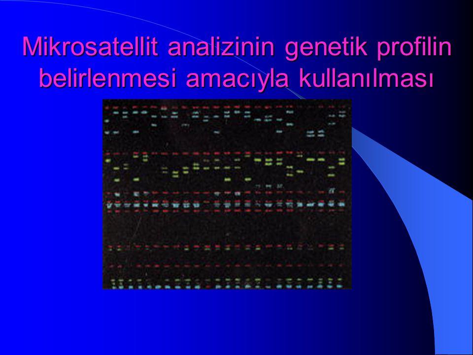 Mikrosatellit analizinin genetik profilin belirlenmesi amacıyla kullanılması