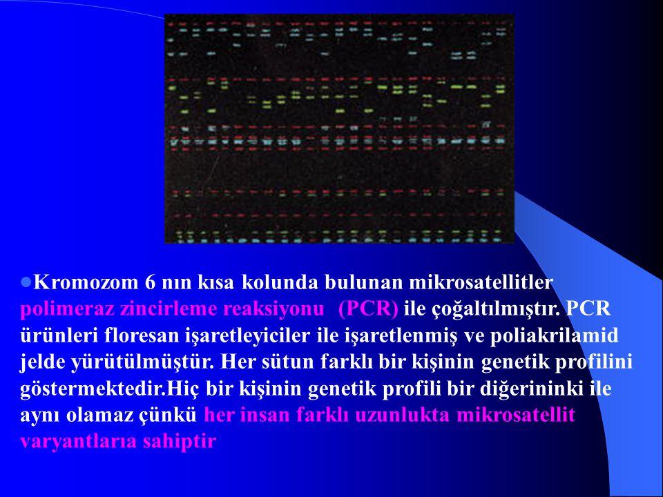Kromozom 6 nın kısa kolunda bulunan mikrosatellitler polimeraz zincirleme reaksiyonu (PCR) ile çoğaltılmıştır.