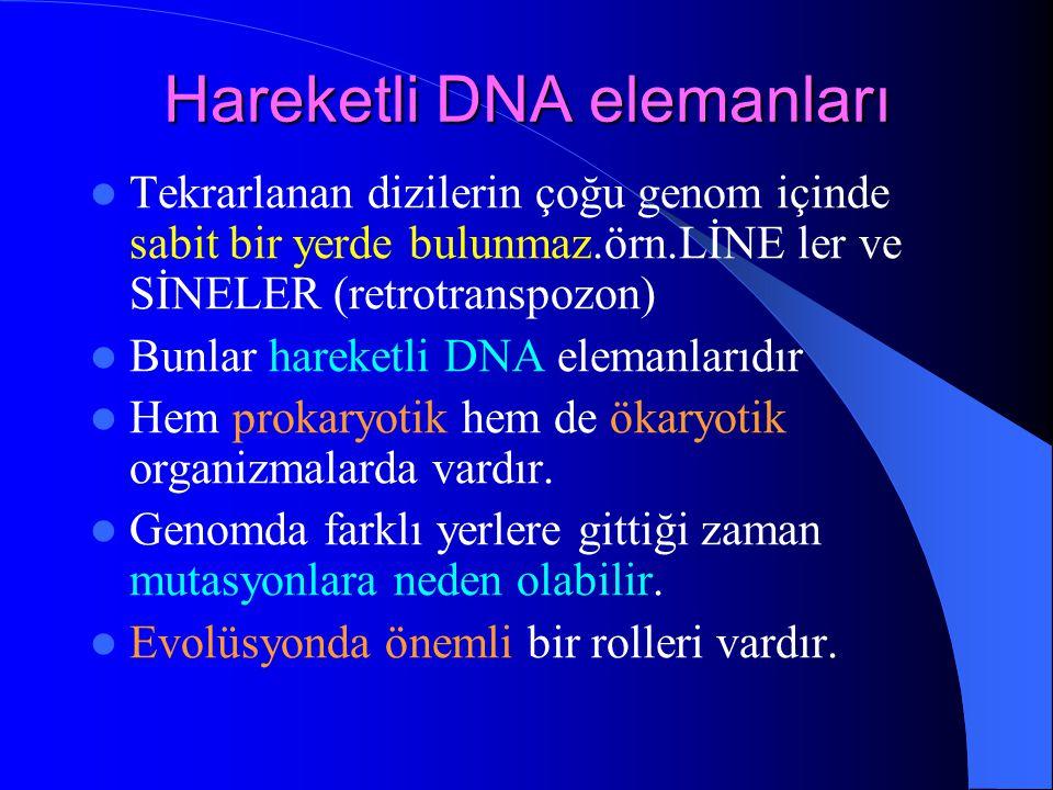 Hareketli DNA elemanları