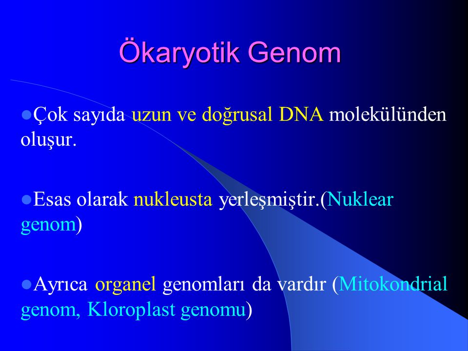 Ökaryotik Genom Çok sayıda uzun ve doğrusal DNA molekülünden oluşur.
