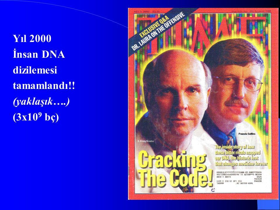Yıl 2000 İnsan DNA dizilemesi tamamlandı!! (yaklaşık….) (3x109 bç)