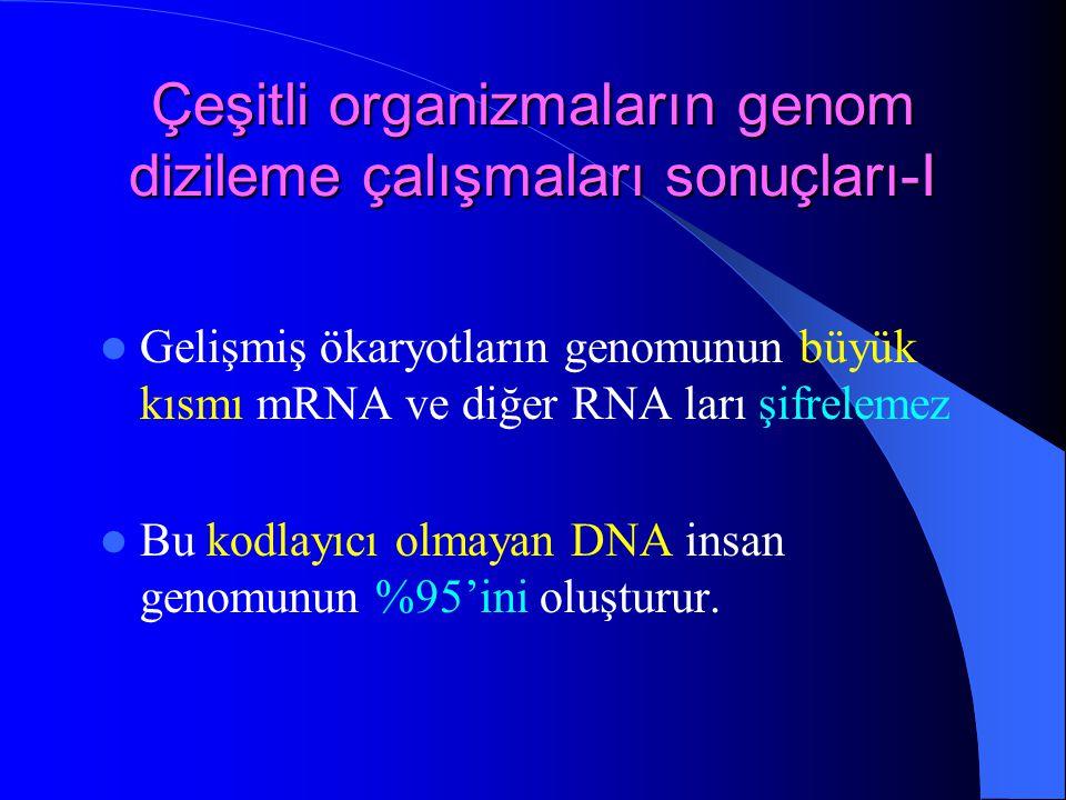 Çeşitli organizmaların genom dizileme çalışmaları sonuçları-I