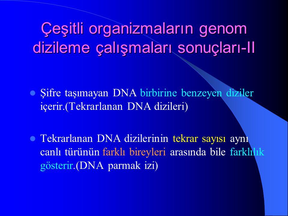 Çeşitli organizmaların genom dizileme çalışmaları sonuçları-II