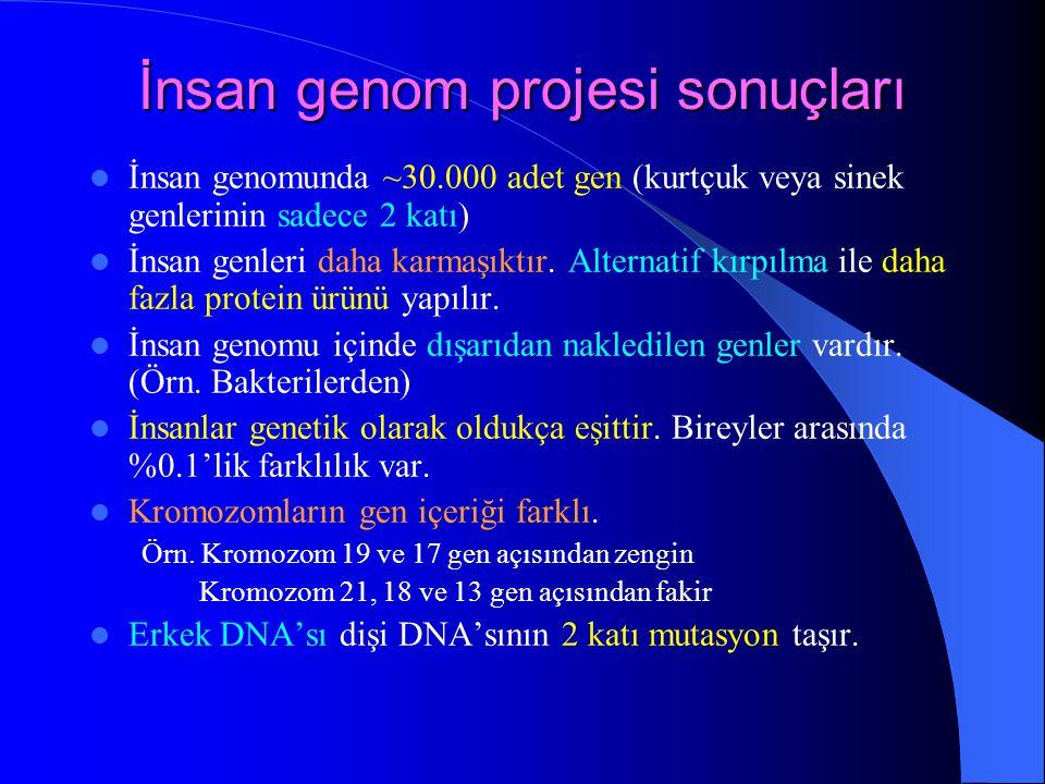 İnsan genom projesi sonuçları