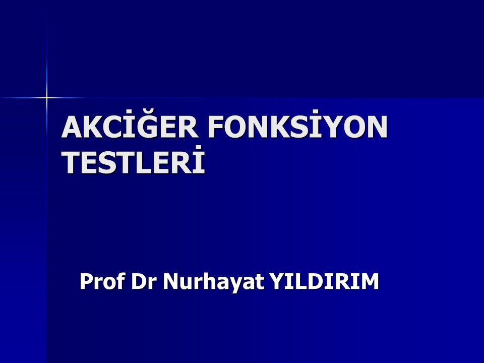 AKCİĞER FONKSİYON TESTLERİ