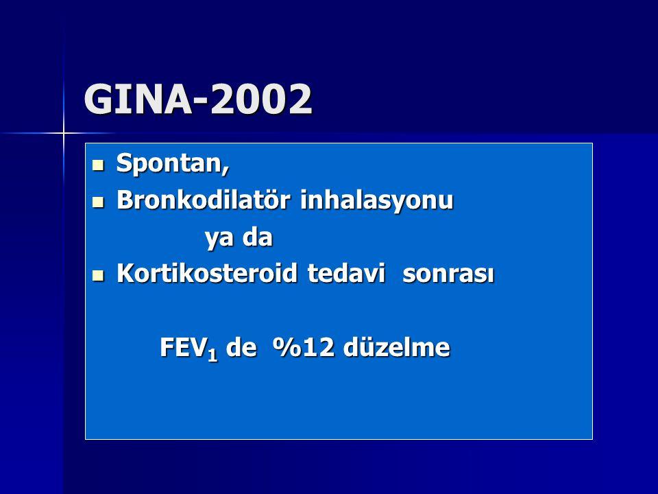 GINA-2002 Spontan, Bronkodilatör inhalasyonu ya da