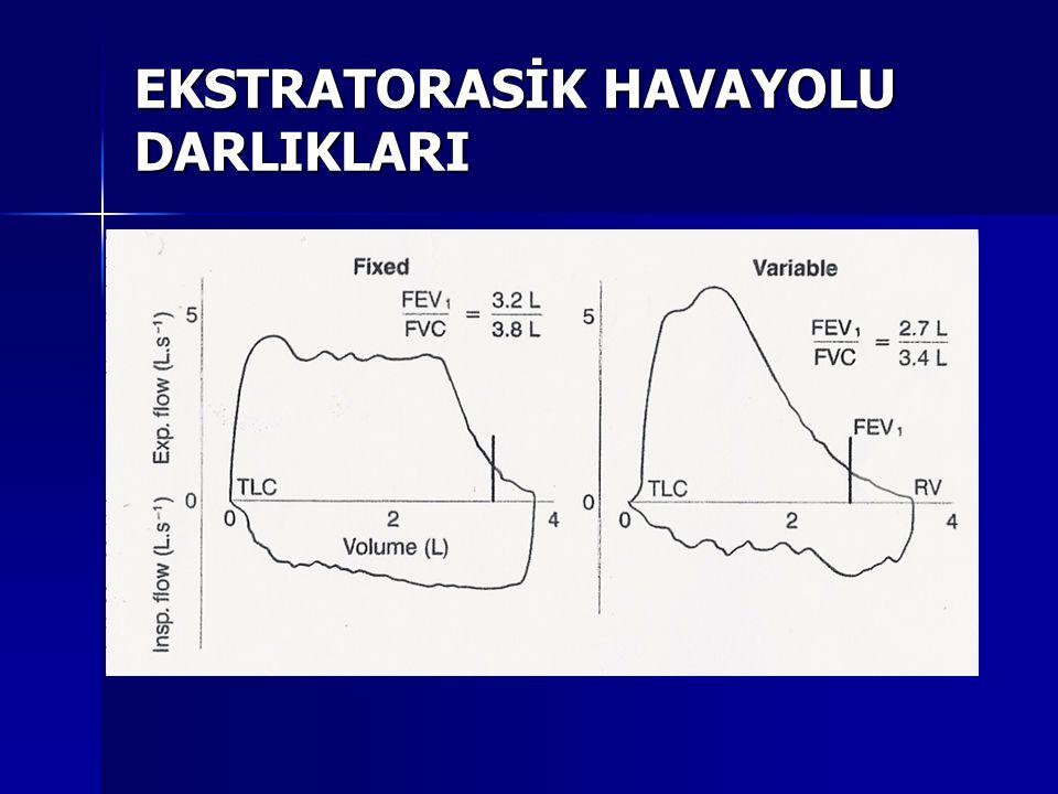 EKSTRATORASİK HAVAYOLU DARLIKLARI