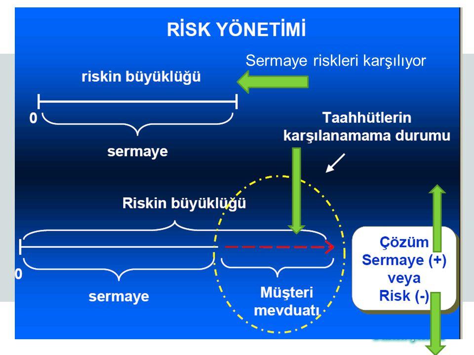 Sermaye riskleri karşılıyor