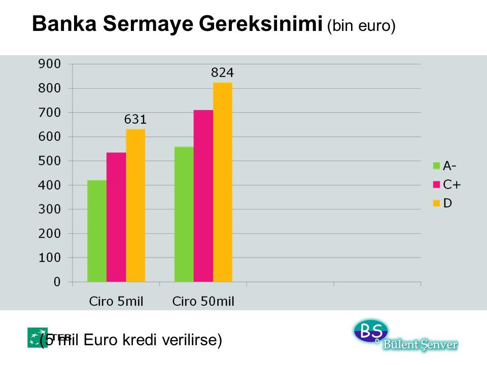 Banka Sermaye Gereksinimi (bin euro)