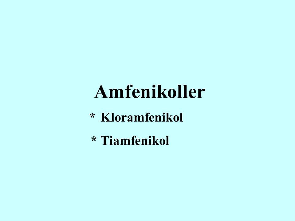 Amfenikoller * Kloramfenikol * Tiamfenikol