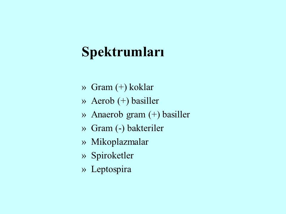 Spektrumları Gram (+) koklar Aerob (+) basiller