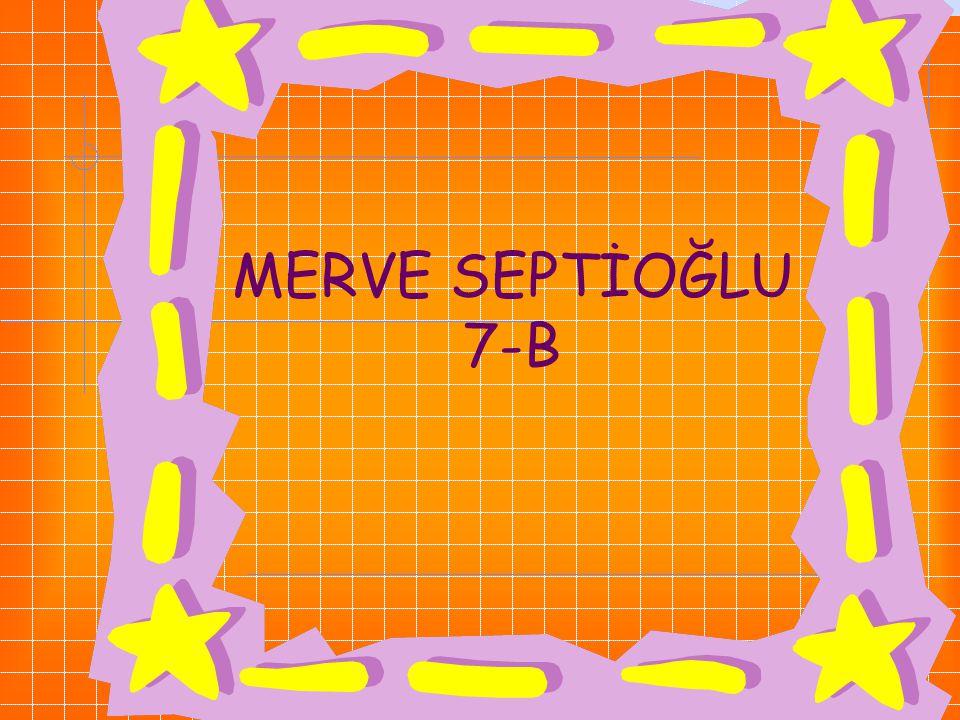 MERVE SEPTİOĞLU 7-B