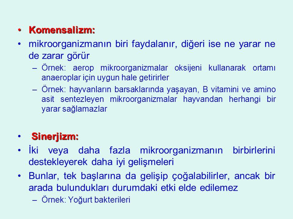 Komensalizm: mikroorganizmanın biri faydalanır, diğeri ise ne yarar ne de zarar görür.