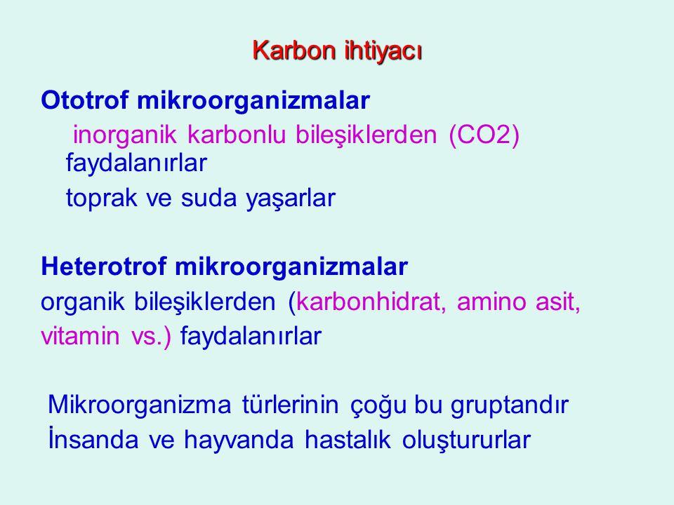 Karbon ihtiyacı Ototrof mikroorganizmalar. inorganik karbonlu bileşiklerden (CO2) faydalanırlar. toprak ve suda yaşarlar.