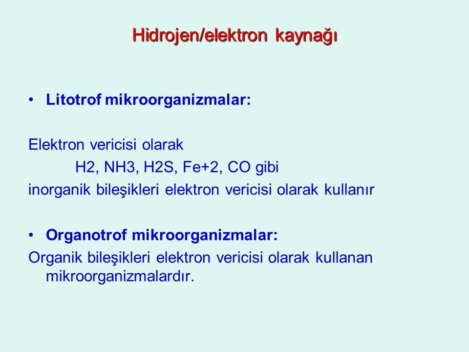 Hidrojen/elektron kaynağı