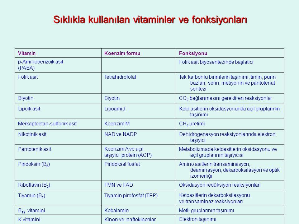 Sıklıkla kullanılan vitaminler ve fonksiyonları